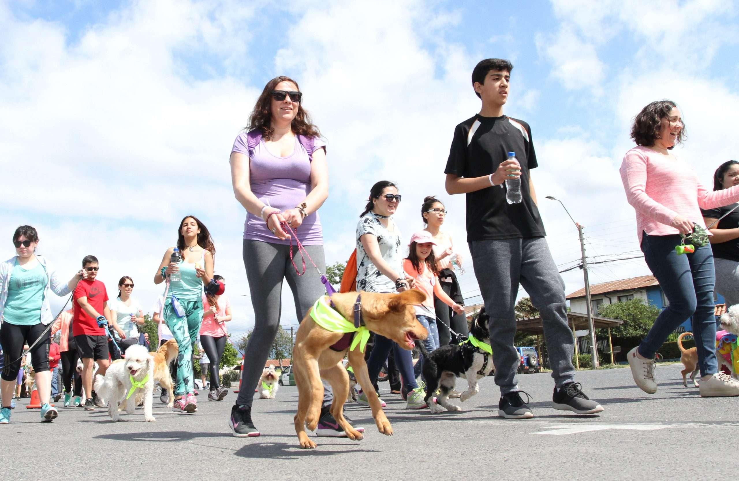 caminata canina 05